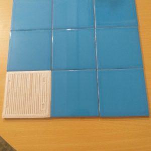 gach the blue 10x10