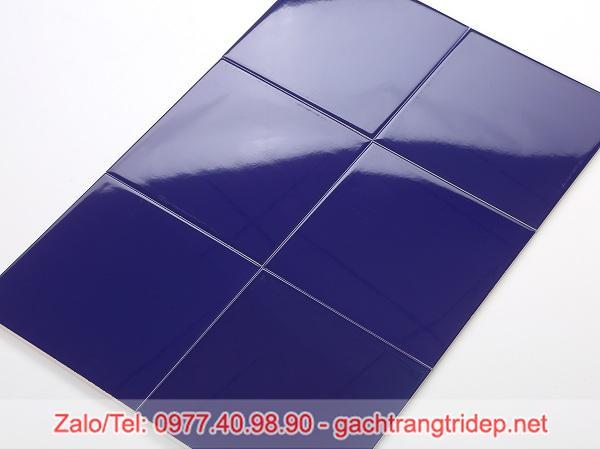 gach the xanh duong dam 10x10cm