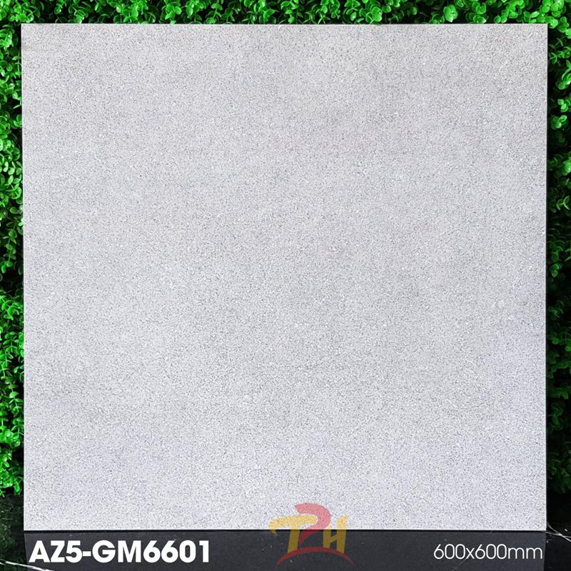 gach 60x60 AZ5 GM6601