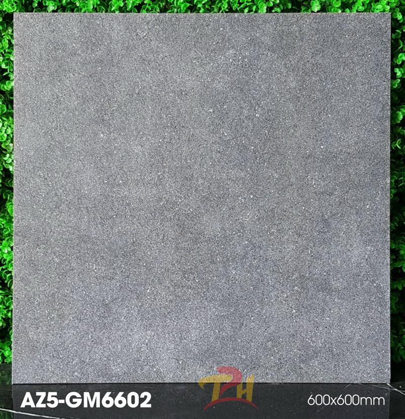 gach 60x60 AZ5 GM6602